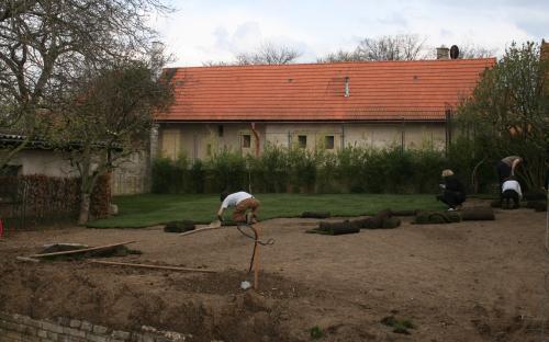 realizace zahrady, pokládka travního koberce